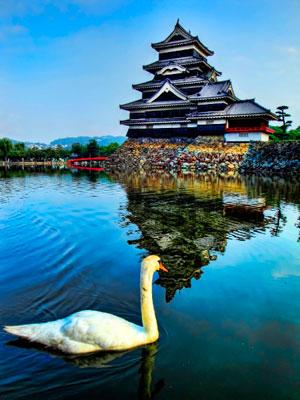 ����� �������� (Matsumoto Castle) - ������� ��������